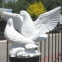 Скульптура пара голубей СК-011 0