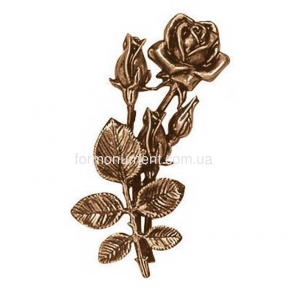 Розы бронза 3722 Lorenzi (Лорензи) высота 22 см